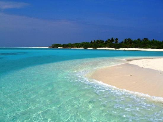 Palm Beach Resort & Spa Maldives: desert island's beach