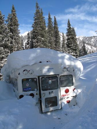 Silverton Mountain: Into-The-Wild rental gear bus