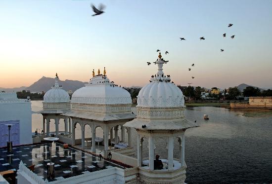 Taj Lake Palace Udaipur: Flocks of birds on  sunset