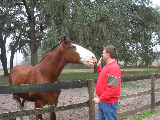 Hilton Ocala: My Husband Feeding Buddy