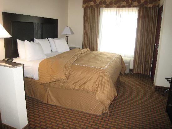 Comfort Suites Morrow: 1