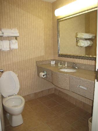 Comfort Suites Morrow: 4
