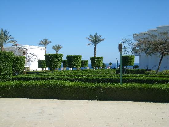 Royal Paradise Beach Resort: Gardens
