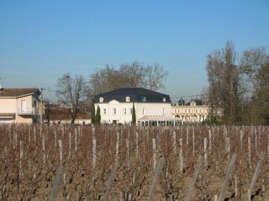 Le Pavillon de Margaux: Hotel - over the Margaux vineyard