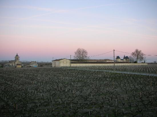 Le Pavillon de Margaux: View from the bedroom window