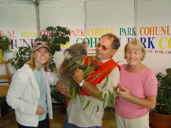 Cohunu Koala Park: Holding the koala
