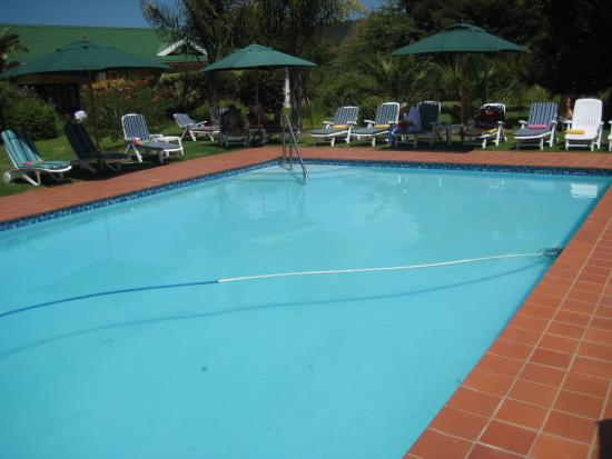 Country Crescent Hotel : Der Pool