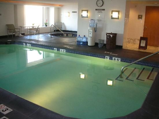 The Westin Detroit Metropolitan Airport: Pool and Jacuzzi