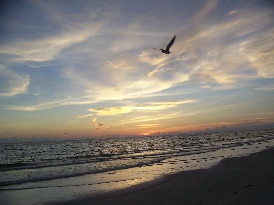 Siesta Beach: The sunsets are beautiful!