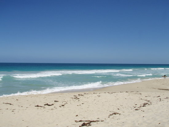 Scarborough, Australien: Gorgeous beach