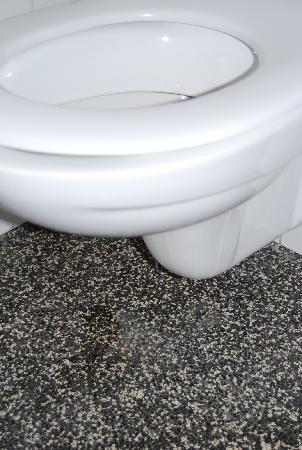 Hotel Impala: the leaky loo