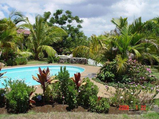 Hotel Gomero: Garden