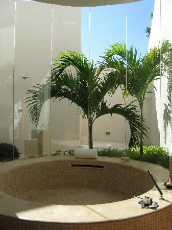 Rosewood Mayakobá: indoor bathtub with view of outdoor shower