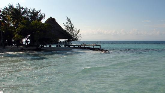 Coco Plum Island Resort : Coco's Bar