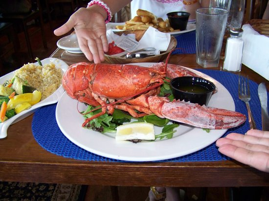 South Yarmouth, MA: the lobster
