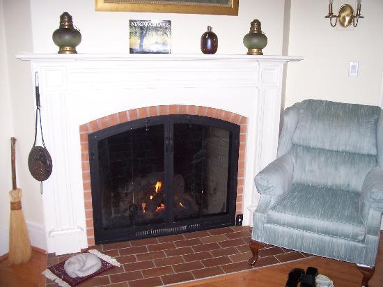 Arbour View B&B: Gas fireplace