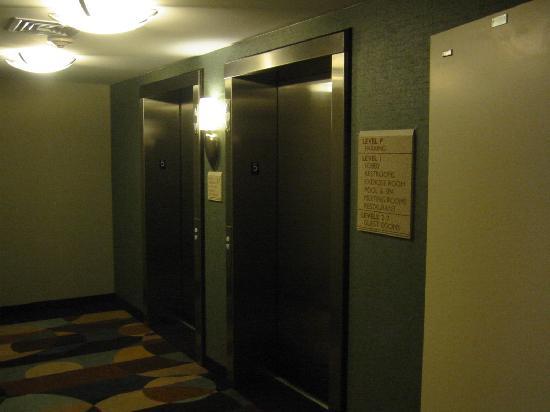 Hilton Garden Inn Albany / SUNY Area: Elevators