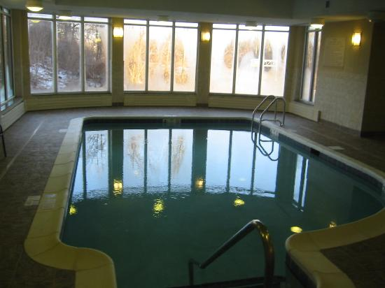 Hilton Garden Inn Albany / SUNY Area: Indoor pool
