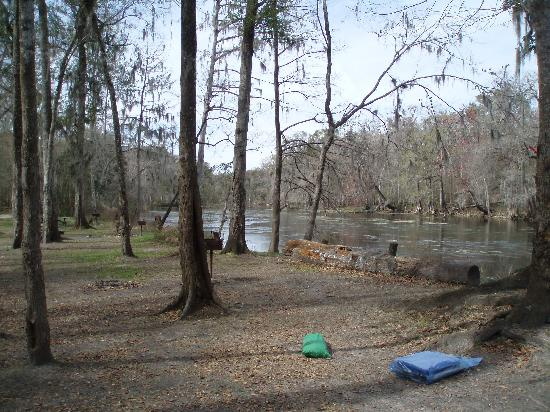 Ginnie Springs: view downriver from our site before more campers arrived