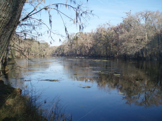 High Springs, FL: view downriver from our campsite