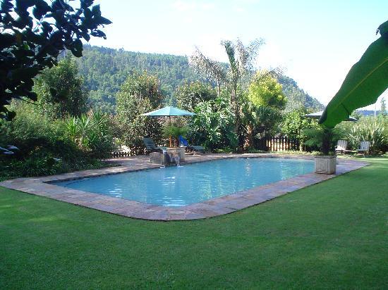 Lone Creek River Lodge: the pool area