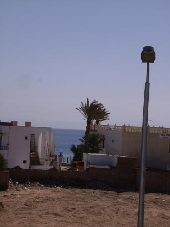 Pearl of South Sinai: view from our room