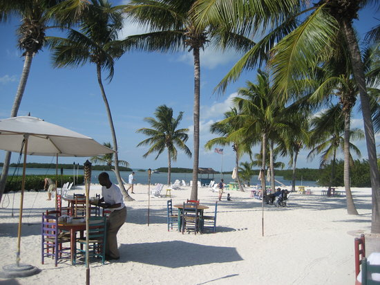 Morada Bay Cafe - Picture of Morada Bay, Islamorada