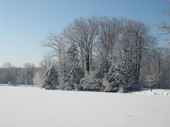 Hawley, Pensylwania: view from cabin after snowfall