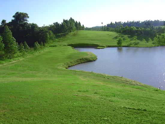 Paraiso Golf Ranch Resort & Spa: All green...
