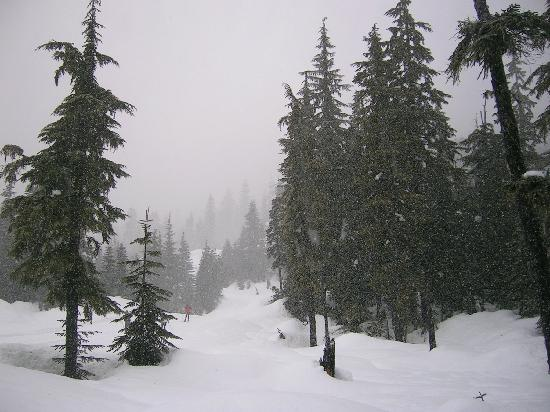 First Tracks Lodge : If it snows too much - try X country at the excellent new Olympic facility 20 mins drive
