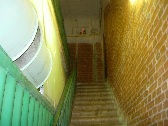 Home from Home Hostel: The stairs to the entrance...