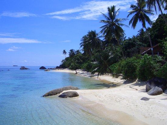 Japamala Resort by Samadhi: La spiaggia