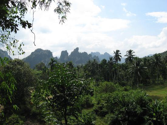 Khaosok Rainforest Resort: view from my room