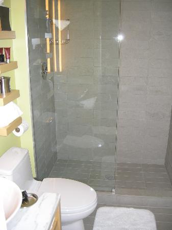 Beautiful Duane Street Hotel: Shower Glass Divider