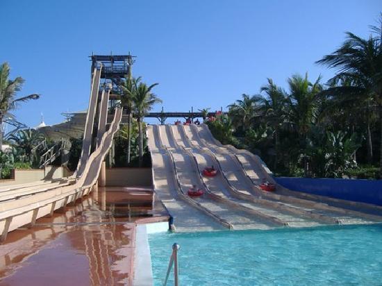 The Ushaka Water Park Picture Of Ushaka Marine World Durban