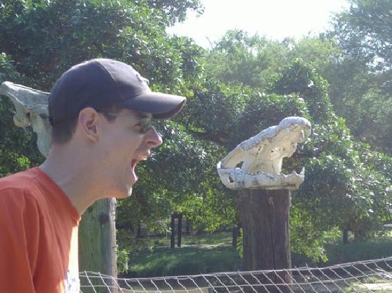 Crocworld Conservation Centre: Say