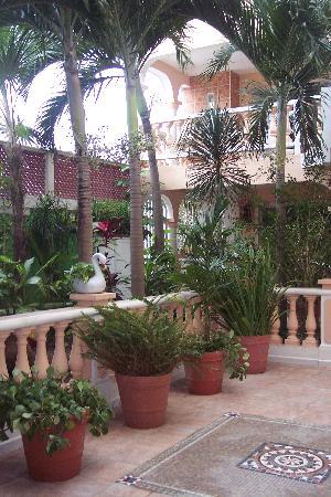 Francis Arlene Hotel: Common area