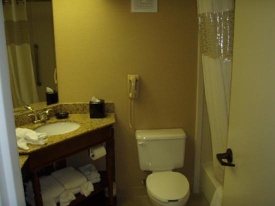 Hampton Inn Atlanta/Newnan: view of room