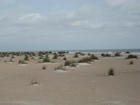 Extractor De Baño Traduccion:Holiday Isle Oceanfront Resort St Augustine Beach
