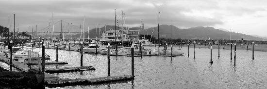 Marina Green: SF Marina Yacht Harbor Docks
