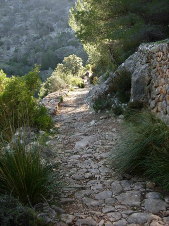 Finca Ca's Sant: the pathways