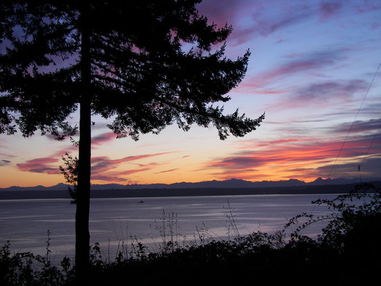 Bloedel Reserve: Sunrise on Bainbridge Island