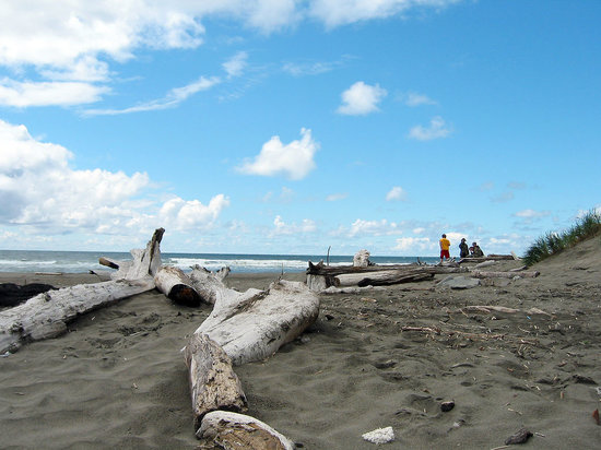 Ocean Shores Vacations