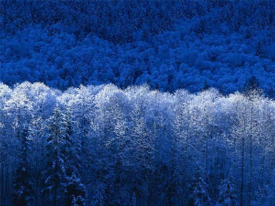 Fall Inn to Nature : winter
