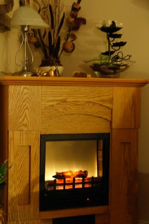 Gite des Aulnaies: cheminé