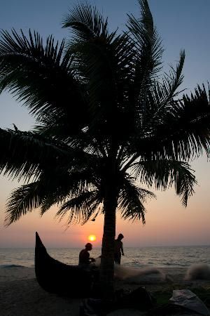 A Beach Symphony: sunset