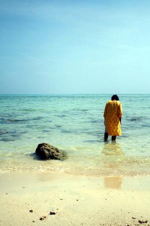vijay nagar beach at havelock island