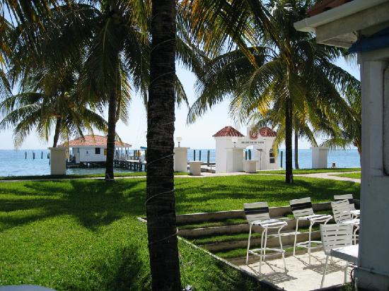 Changes In Latitudes Bed and Breakfast: Lawn in front of neighboring Belize Yacht Club