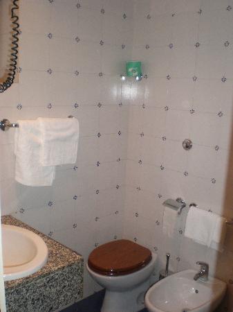 Hotel Garda: Bathroom, basic but very clean