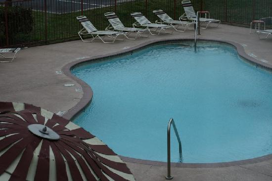 Super 8 Austin North: Pool view
